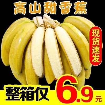 云南香蕉整箱10斤/6斤自然熟當季水果新鮮包郵十斤非廣西小米蕉