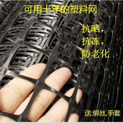 37042/塑料网格养殖鸡鸭围栏网土工格栅加厚漏粪网玉米果园圈地防护网