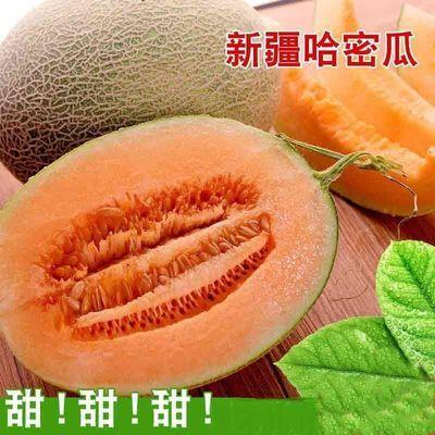 爆甜新疆哈密瓜西州蜜香瓜晓蜜25当季新鲜水果批发价孕妇辅食整箱