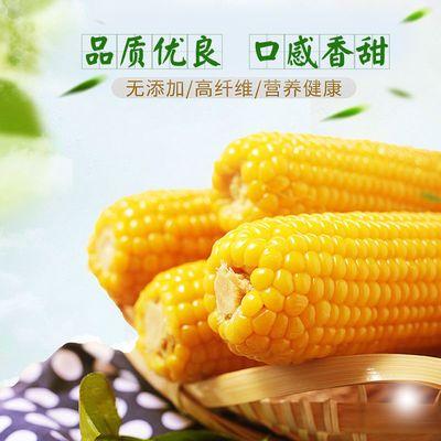 荆凯达水果玉米整根新鲜带壳甜玉米棒荆州土特产水果玉米软糯鲜甜