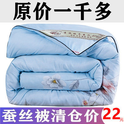 36833/特价蚕丝被100%桑蚕丝春秋被空调被子单人双人加厚冬被被芯棉被褥