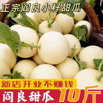应季当季新鲜水果陕西阎良甜瓜10斤脆香瓜软糯香甜现货批发市场