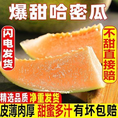 【皮薄脆甜】现摘哈密瓜10斤新鲜水果批发网纹瓜甜蜜瓜西州蜜2斤
