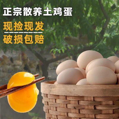 正宗农家柴鸡蛋 新鲜土鸡蛋 草鸡蛋 农村笨鸡蛋 批发整箱
