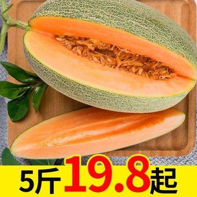 海南哈密瓜当季新鲜水果脆甜网纹蜜瓜应季小香瓜整箱