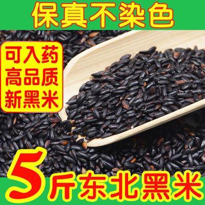 5斤东北黑米五谷杂粮米粥紫米农家大米黑米5斤黑米1斤装批发代餐