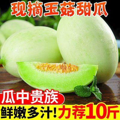 头茬玉菇甜瓜现货3/5/10斤青皮绿肉香瓜蜜新鲜水果软糯香甜哈密瓜