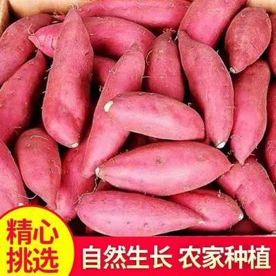 新鲜地瓜红薯【山东】沙地蜜薯高山泉水灌溉软糯香甜山芋板栗薯批