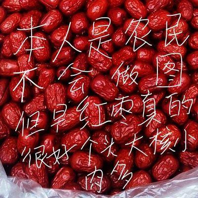 红枣5斤新疆和田特级大枣特大新鲜玉枣正宗一级六星骏枣特产