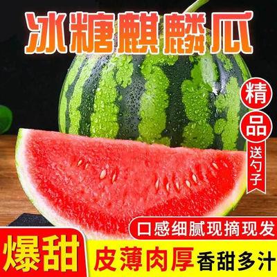 新鲜8424冰糖麒麟西瓜当季水果薄皮西瓜孕妇薄皮爆汁甜脆现摘现发