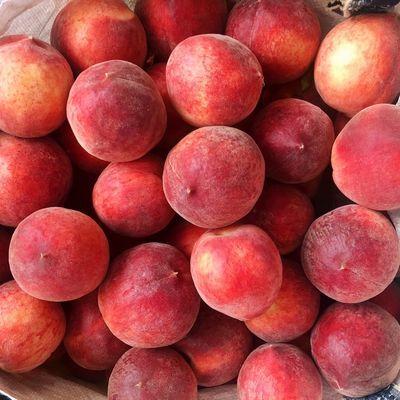 【三次严选】桃子毛桃新鲜水果山西水蜜桃脆甜桃毛桃3/5/10斤包邮