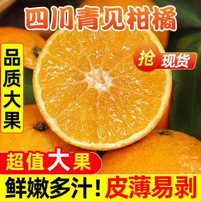 四川青见果冻橙橘子新鲜水果现摘现发孕妇水果整箱批发非丑橘蜜橘