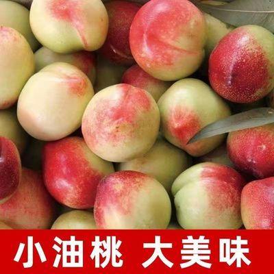 油桃现摘新鲜孕妇水果应季白心白肉红宝石甜油桃非黄心油桃水蜜桃