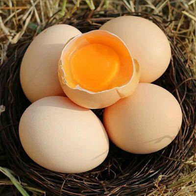 【土鸡蛋】40枚无菌鸡蛋农家谷物鸡蛋散养五谷杂粮蛋新鲜鸡蛋整箱