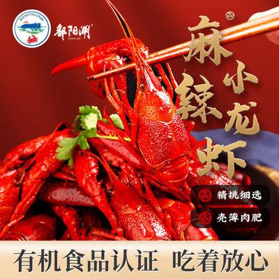 75628/麻辣小龙虾熟食即食香辣蒜蓉4-6钱鄱阳湖龙虾盒装自热大虾