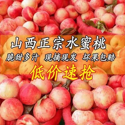 新鲜水蜜桃3/5/10斤现摘现发脆甜桃子孕妇果非油桃阳山水蜜桃黄桃