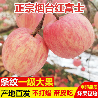 山东烟台红富士苹果新鲜水果糖心脆甜当季现摘一级丑苹果整箱包邮