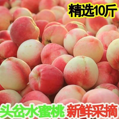 桃子脆甜水蜜桃10斤新鲜水果当季春雪毛桃脆桃非黄桃油桃蟠桃3斤【6月5日发完】