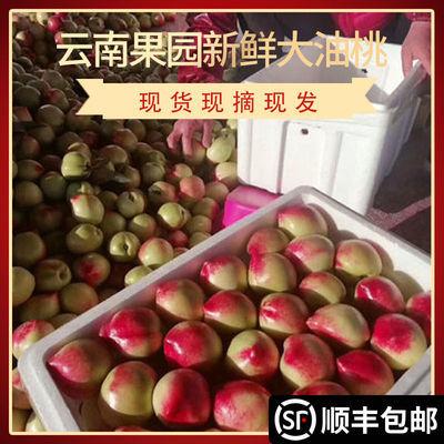 【顺丰包邮】红宝石油桃新鲜水果应季白心桃子非黄心油桃水蜜桃