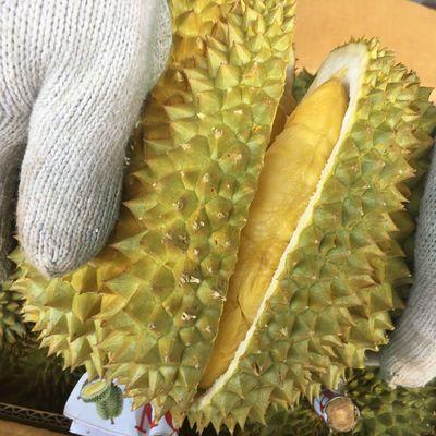 泰国金枕头榴莲新鲜带壳水果当季特产巴掌进口榴莲整箱2-10斤包邮