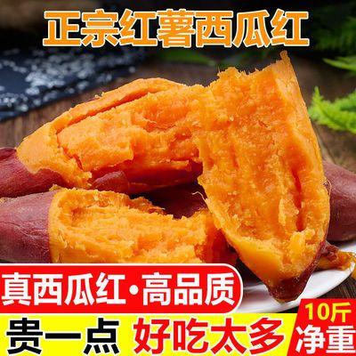 新鲜红薯西瓜红现挖红心蜜薯山芋番薯小香薯地瓜糖心烤薯批发地瓜