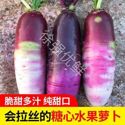 现拔冰激凌糖心萝卜水果萝卜青萝卜紫美人新品种生吃甜脆新鲜果蔬