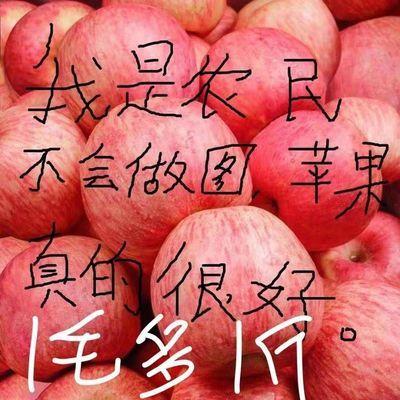 【诚心价】山东新鲜红富士苹果冰糖心丑苹果应季水果超甜特脆批发