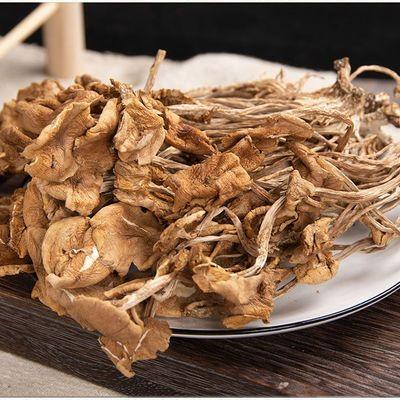 海鲜菇干货特产茶树菇茶薪菇滋补茶薪菇滋补