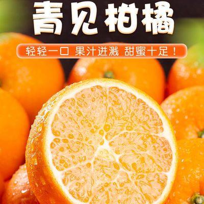 正宗四川青见柑桔子青见柑橘水分大纯甜新鲜水果