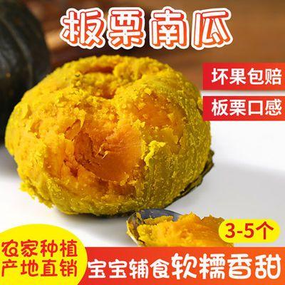 【板栗老南瓜】粉糯香甜板栗迷你小南瓜宝宝辅食代餐非日本贝贝