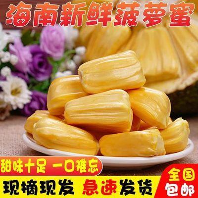 海南三亚新鲜大树黄肉菠萝蜜一整个 当季水果果肉饱满热带水果