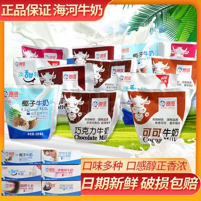 36678/新日期天津海河牛奶风味奶 可可草莓巧克力咖啡麦香纯奶调制乳
