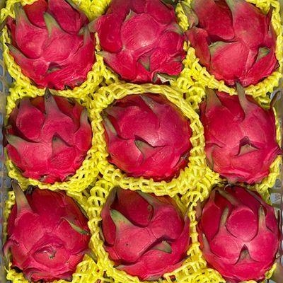 特价 新鲜金都蜜宝红心火龙果 当季红肉红龙果新鲜水果整箱批发