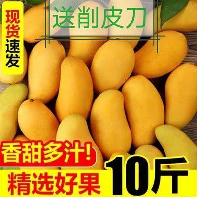 海南台农鸡蛋迷你芒果新鲜10斤当季新鲜热带青皮小台农