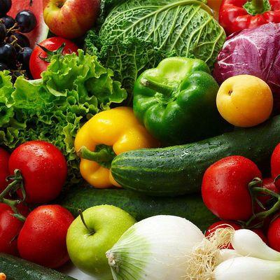 黄瓜木瓜苦瓜新鲜茄子广东凉瓜农家茄瓜番茄西红柿现摘蔬菜露天种