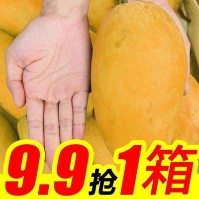 39735/海南直发大青芒金煌芒果新鲜水果3斤,5斤,带箱10斤整箱批发零售