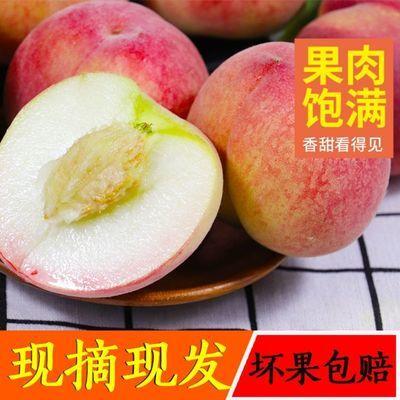 【原产地直发】云南新鲜血桃 孕妇水果现摘现发桃子吃货脆桃 批发