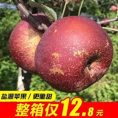 四川新鲜脆甜冰糖心盐源丑苹果非昭通苹果陕西红富士平果3/5/8斤