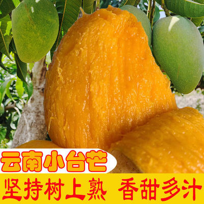 云南纯甜台农芒果现摘大台芒新鲜当季应季整箱热带水果非海南果