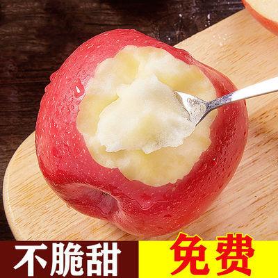陕西苹果红富士水果批发一整箱现摘冰糖心平果超甜脆甜10斤脆萍果