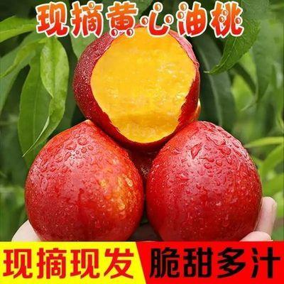 黄心油桃新鲜5斤桃子脆桃应季水果脆甜整箱批发现摘现发
