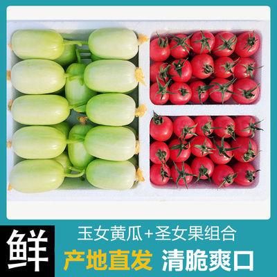 39560/产地包邮金童玉女黄瓜小番茄鲜水果黄瓜拇指黄瓜圣女果非千禧蔬菜