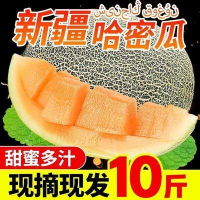 【脆甜多汁】新疆哈密瓜当季新鲜孕妇水果现摘现发头茬网纹瓜批发
