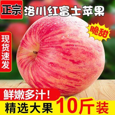 【超脆甜苹果】陕西洛川苹果红富士冰糖心苹果批发价整箱新鲜水果