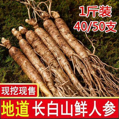 57689/正宗长白山鲜人参带土鲜参现挖现卖产地直发新鲜人参园参泡酒煲汤