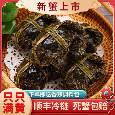 【横行记】大闸蟹鲜活冷链包邮现货六月黄公母清水螃蟹2.5-1.2两