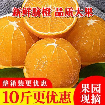 高山脐橙新鲜水果香橙现摘现发手剥甜橙孕妇水果当季水果非果冻橙