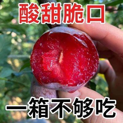 【顺丰包邮】云南老品种三华李红心李孕妇钱排新鲜水果孕妇红肉