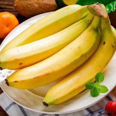 云南香蕉自然熟水果新鲜当季整箱10斤大香焦批发非广西小米蕉芭蕉