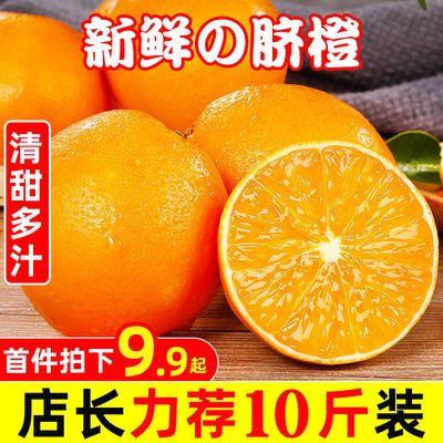 【特惠10斤】高山甜脐橙夏橙当季新鲜夏橙橙子新鲜橙子脐橙水果